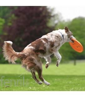 Dog Disc - frisbee pour chien