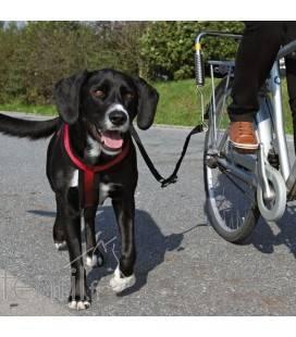 Biker-Set pour moyens & grands chiens