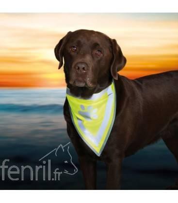 Bandana pour chien fluo Safer Life