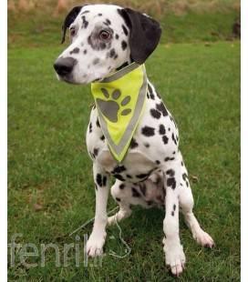 Bandana de sécurité pour chien Safer Life