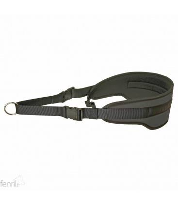 Confort ceinture canicross