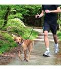Laisse jogging Dog Activity