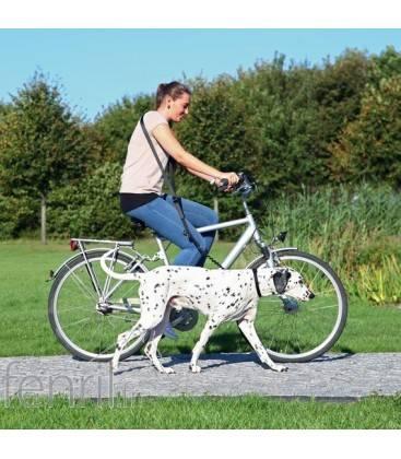 Laisse vélo pour chien Dog Activity