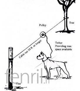 Tyrolienne pour chien - exemple de configuration