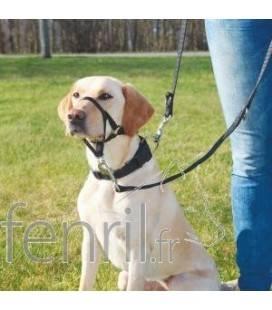 Trixie Top Trainer - Harnais d'éducation pour chien