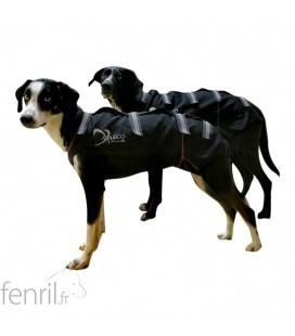 Axaeco Ice Olation manteau d'attelage pour chien