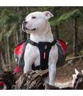 Ezydog Summit V3 - sac à dos pour chien