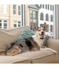 Collier anti-aboiement Deluxe petit chien
