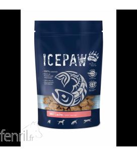 Icepaw Snack Saumon