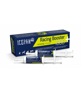 Icepaw Racing Booster 1000