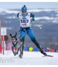 Inlandsis Skijor Pro V2 - laisse skijoring