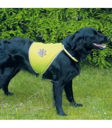 Gilet fluo pour chien