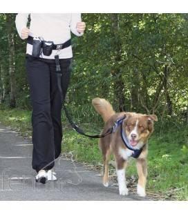 Laisse de jogging